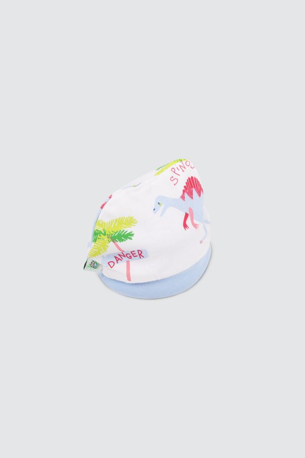 Boy-Hat-Dino—zCrooked