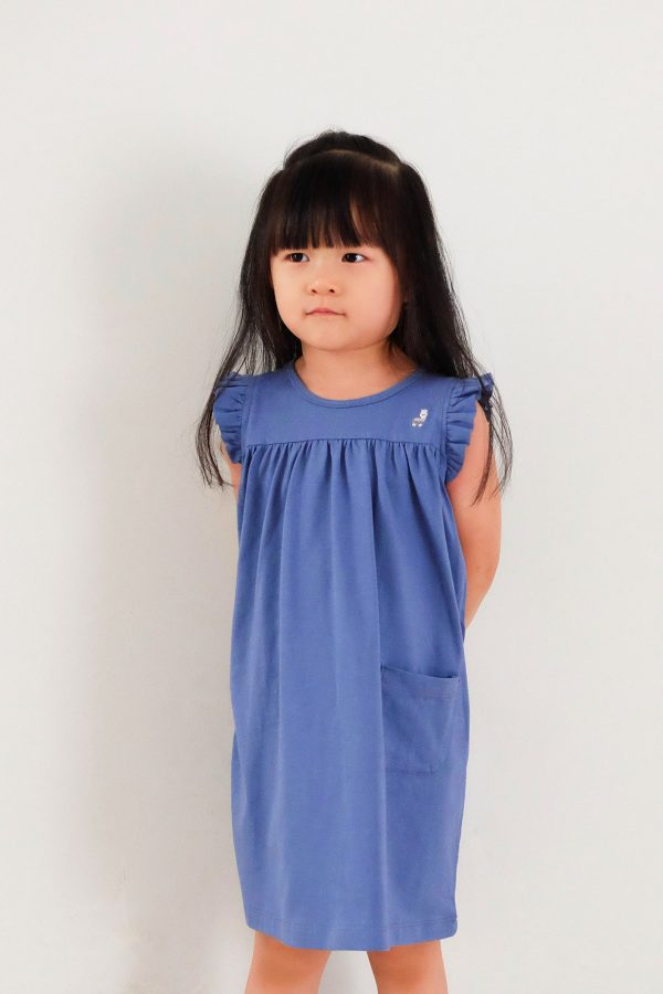 Coco-Dress-Steel-Blue—zModel