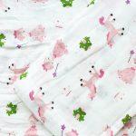 Infinity-Blanket-Princess-Frog-1