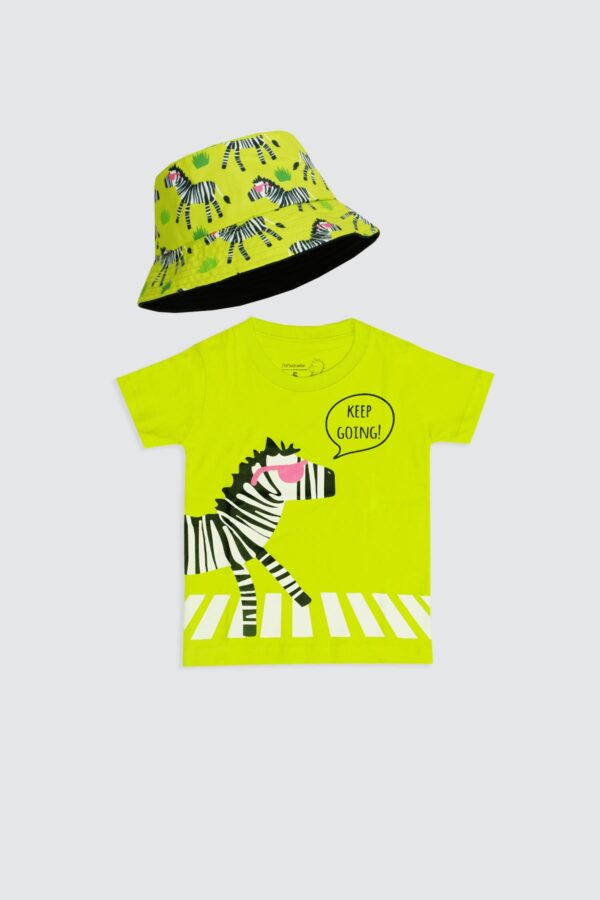 Zebra-on-road-1